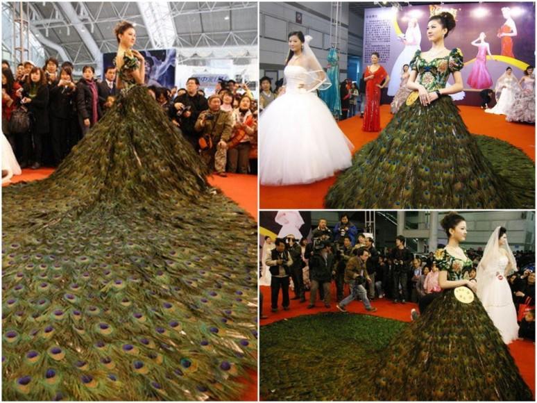 2009 pávatollból készült menyasszonyi ruha , Peacock wedding dress made up to of 2009 feathers Forrás:http://totallystitchin.net/